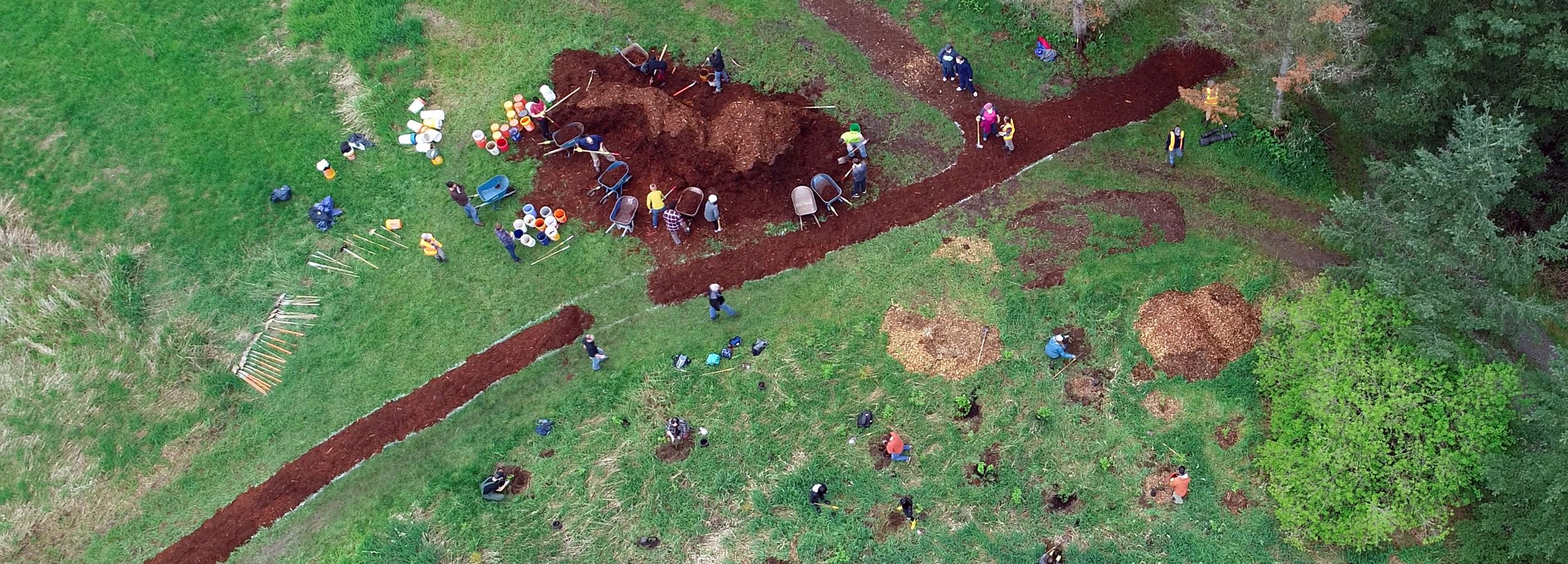 Arbor Day_ Drone_Tree Planting