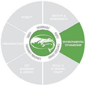 Environmental Stewardship Pie